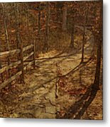 Walkway Through The Forest Metal Print
