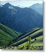 1m5903-wallowa Mountains And Valley Of The East Fork Metal Print