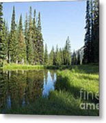 Wallowas - No. 3 Metal Print