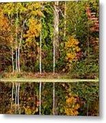 Walnut Creek Lake Autumn Reflection Metal Print