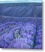 Walruses In A Field Of Lavender Metal Print