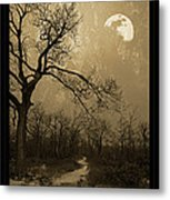 Waning Winter Moon Metal Print