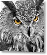Watching You Owl Metal Print