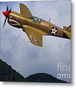 Warhawk Curtiss P-40  Metal Print