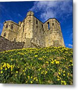 Warkworth Castle In Spring Metal Print