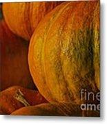 Warm Autumn Color Palette.  Metal Print