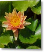 Warm Yellows Oranges And Corals - A Waterlily Impression Metal Print