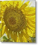 Warmth Upon My Back - Sunflower Metal Print