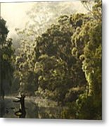 Warren River - Western Australia 2am-113012 Metal Print