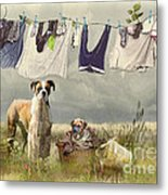 Wash Day Metal Print by Trudi Simmonds