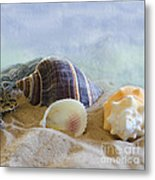 Washed Ashore Metal Print by Betty LaRue