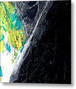 Washington Eagle Two Metal Print