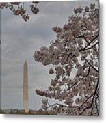 Washington Monument - Cherry Blossoms - Washington Dc - 011319 Metal Print by DC Photographer