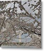 Washington Monument - Cherry Blossoms - Washington Dc - 011323 Metal Print by DC Photographer