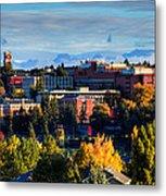 Washington State University In Autumn Metal Print by David Patterson