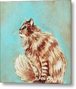 Watch Cat Metal Print