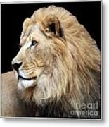 Watch Out With Border Metal Print