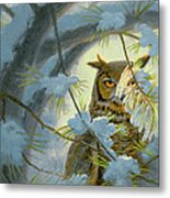 Watchful Eye-owl Metal Print by Paul Krapf