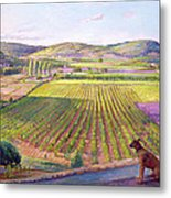 Watching From The Walls Old Provence Metal Print