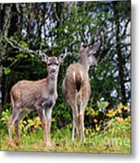 Watching Out For Mom Metal Print