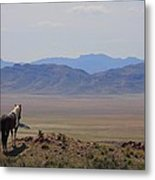 Watching Over The Land Metal Print
