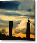 Watching The Sunrise Metal Print