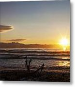 Watching The Sunset With Friends Metal Print