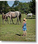 Watching The Wild Horses Metal Print