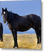 Watching You Wild Mustang Metal Print