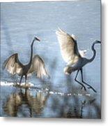 Water Ballet  Metal Print