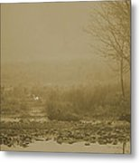 Water Buffalo And Egret Metal Print