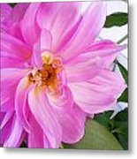 Water Color Dahlia Metal Print