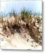 Water Color Sketch  Beach Dune Metal Print