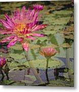 Water Garden Dream Metal Print