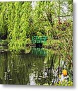 Water Garden Wonder Metal Print