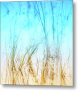 Water Grass - Outer Banks Metal Print