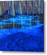 Water Hole Metal Print