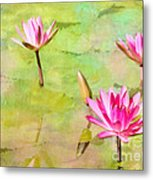 Water Lilies Inspired By Monet Metal Print