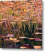 Water Lilies Re Do Metal Print