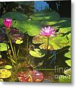 Water Lilly Garden Metal Print