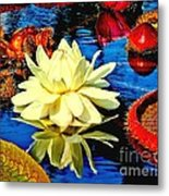 Water Lilly Pond Metal Print by Nick Zelinsky