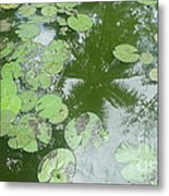 Water Lily Leaves And Palm Trees Metal Print