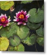 Water Lily Neo Metal Print