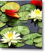 Water Lily Pond In Autumn Metal Print