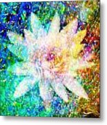 Water Lily With Iridescent Water Drops Metal Print