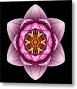 Water Lily X Flower Mandala Metal Print