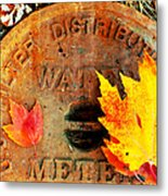 Water Meter Cover With Autumn Leaves Abstract Metal Print