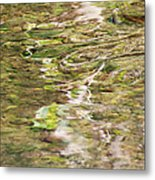 Water Reflection Metal Print