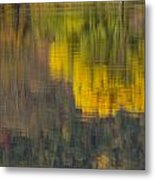 Water Reflections Abstract Autumn 2 B Metal Print