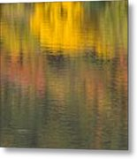 Water Reflections Abstract Autumn 2 C Metal Print